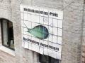 fish17-1